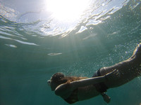 WALLY'S AMAZING UNDERWATER SHOT
